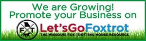 Advertise with Let's Go Foxtrot