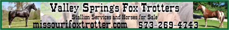 Valley Springs Fox Trotters