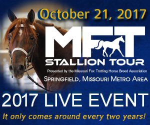 MFT Stallion Tour
