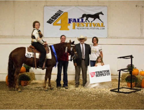 Region 4 Fall Festival Highlights the State Horse of Missouri